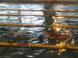 泳ぐ息子の写真・画像素材[2219017]
