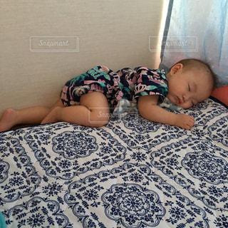 お昼寝の写真・画像素材[2381456]