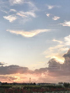 風景,空,秋,雲,夕焼け,夕暮れ,夕方,羽,畑,不思議,夕空,秋空,秋の空,すすき,インスタ映え