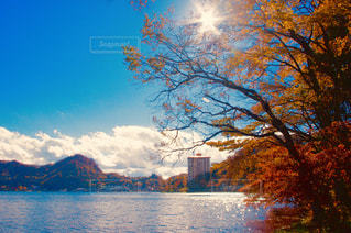 空,秋,紅葉,屋外,湖,太陽,赤,雲,青空,青,山,オレンジ,秋の空,輝き