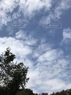 空,屋外,雲,高い
