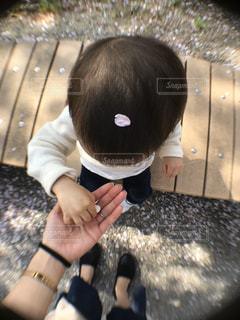 子ども,家族,1人,公園,花,春,桜,木,屋外,ピンク,白,ベンチ,手,花見,桜並木,花びら,木漏れ日,光,お花見,イベント,幼児,頭,花弁