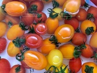 食べ物,朝食,赤,カラフル,水,黄色,オレンジ,果物,トマト,野菜,皿,ミニトマト,サラダ,弁当,食品,イエロー,新鮮,クリア,プチトマト,ビタミン,食材,暖色,彩,フレッシュ,彩り,ベジタブル,洗う,浮かぶ,暖色系,配置
