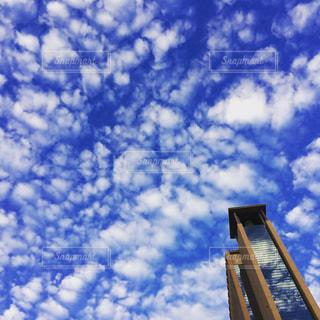 空,雲,青,秋空