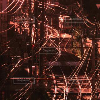 夕方の路面電車の写真・画像素材[1687031]