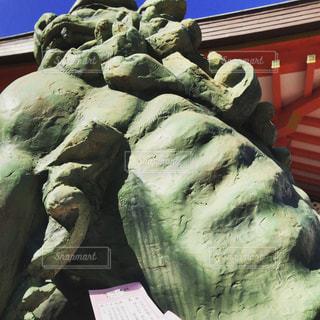 狛犬の写真・画像素材[1727867]