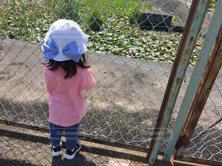 屋外,後ろ姿,帽子,子供,女の子,人物,背中,リボン,人,後姿,フェンス,幼児,うしろ姿,2歳,白い帽子