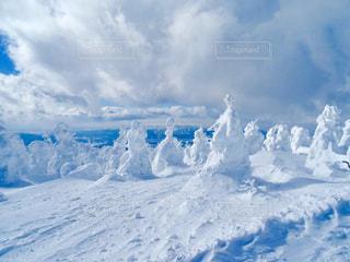 空,雪,白,青,雪山,景色,鮮やか,光,旅行,旅,山形,樹氷,蔵王,眺め