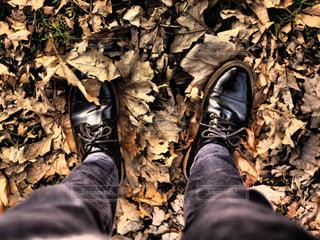 木の隣に立っている人の写真・画像素材[1801235]
