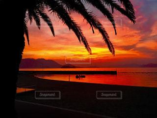 ヤシの木の隣の水の上の夕日の写真・画像素材[2333525]