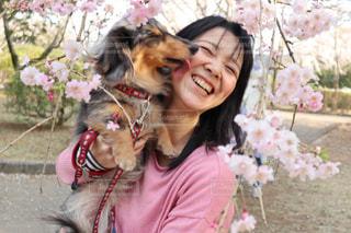 犬,自然,空,春,桜,景色,わんちゃん