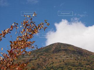 空,秋,紅葉,日光,山,景色,秋空