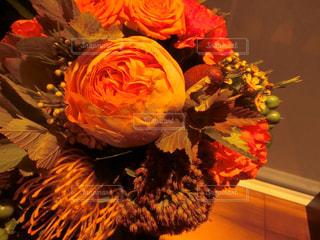 花の写真・画像素材[1577568]