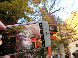 iPhone越しの世界の写真・画像素材[1607578]