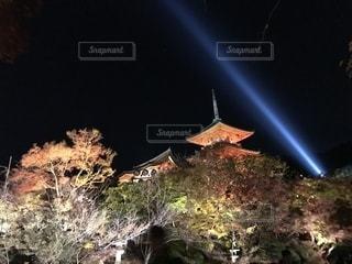 夜のライトアップされた街の写真・画像素材[1624144]