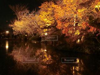 清水寺ライトアップの写真・画像素材[1627772]