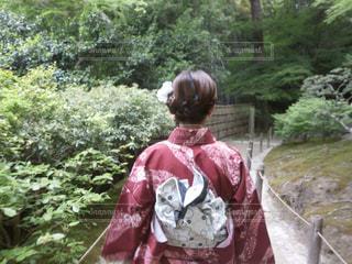森の横に立っている人の写真・画像素材[1650791]
