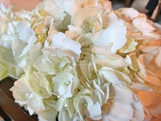 花,屋内,白,花束,結婚式,結婚,装飾,披露宴,ホワイト,ブライダル,ウェディング,テーブルフラワー