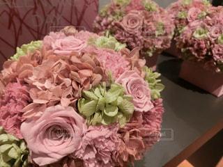 花の写真・画像素材[2009544]
