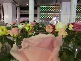 花の写真・画像素材[2009553]