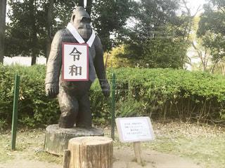 れいわごりらの写真・画像素材[2099484]