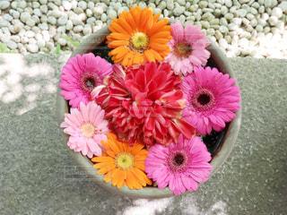 手水鉢の写真・画像素材[2121573]