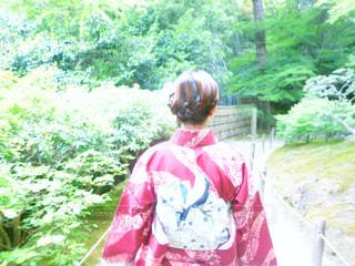 女性,京都,後ろ姿,女,女子,人物,新緑,着物,人,和服,後ろ