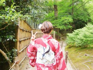 女性,髪,屋外,京都,赤,後ろ姿,女,樹木,人物,着物,人,アップ,和服,帯,和装,草木