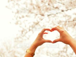 桜,カップル,手,ハート,デート,さくら,ハンドサイン