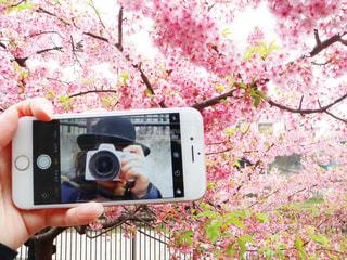 カメラのポーズをとる鏡の前でカメラを持つ手の写真・画像素材[2270278]