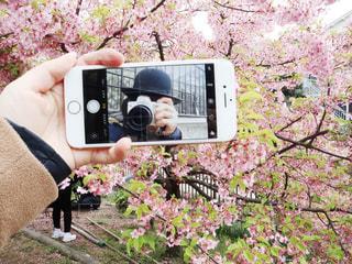 カメラを持っている人の写真・画像素材[2293944]