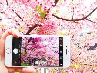 携帯電話のクローズアップの写真・画像素材[2293946]