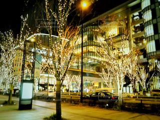 夜,屋外,車,樹木,イルミネーション,都会,明るい,通り,車両,シャンパンゴールド