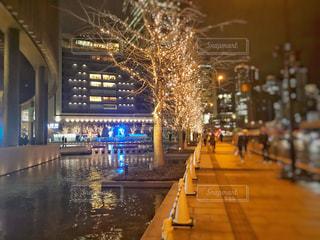 建物,夜,大阪,樹木,イルミネーション,都会,梅田,グランフロント,うめきた,シャンパンゴールド