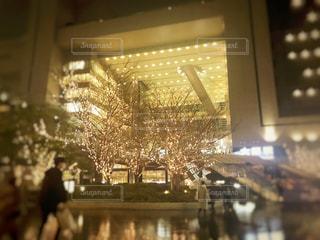 樹木,都会,高層ビル,明るい,大阪駅,グランフロント,うめきた,シャンパンゴールド