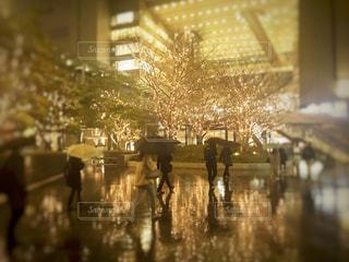 建物,雨,水面,樹木,高層ビル,明るい,大阪駅,通り,グランフロント,シャンパンゴールド