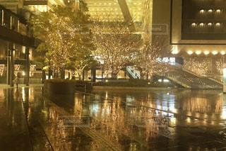 夜,屋外,水面,樹木,明るい,グランフロント,うめきた,シャンパンゴールド