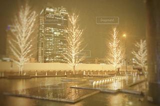 空,冬,夜,屋外,樹木,明るい,グランフロント,スカイビル,うめきた,シャンパンゴールド