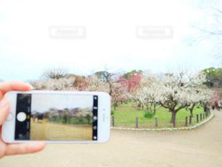 携帯電話を持つ手の写真・画像素材[3016690]