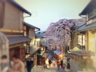 空,建物,桜,京都,しだれ桜,サクラ,樹木,枝垂れ桜,三年坂,さくら,産年坂