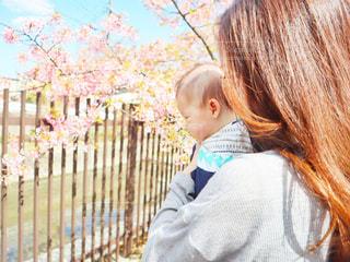 女性,子ども,1人,2人,モデル,春,桜,ロングヘア,ファミリー,京都,親子,花見,母親,サクラ,お花見,人,赤ちゃん,幼児,少年,若い,ベビー,ママ,河津桜,おでかけ,さくら,淀水路,若いママ