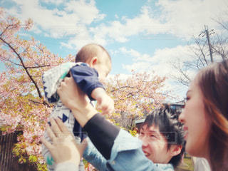 女性,男性,家族,3人,空,桜,ファミリー,青空,サクラ,満開,人,笑顔,赤ちゃん,幼児,若い,河津桜,たかいたかい,さくら,淀水路