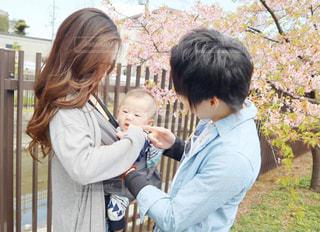 子ども,家族,3人,桜,ファミリー,京都,親子,サクラ,お花見,人,笑顔,河津桜,おでかけ,さくら,淀水路