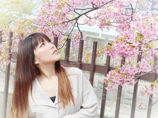 女性,1人,花,桜,ロングヘア,京都,花見,サクラ,見上げる,お花見,人,河津桜,さくら,淀水路