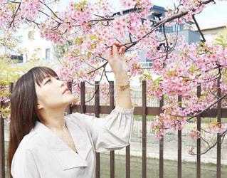 女性,1人,モデル,花,桜,ロングヘア,花見,お花,サクラ,お花見,人,河津桜,さくら,ブロッサム