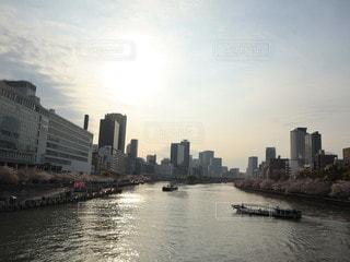 大川の桜と夕暮れの写真・画像素材[3342437]