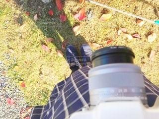 秋の写真・画像素材[3390600]