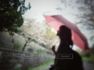ピンクの傘を持っている人の写真・画像素材[3677458]