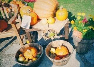 テーブルの上に果物のボウルの写真・画像素材[3781089]