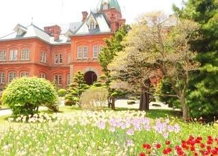 北海道庁の写真・画像素材[4131622]